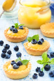 Lamon curd tarts with blueberries Stock Image