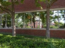 Lamont Library, yarda de Harvard, Universidad de Harvard, Cambridge, Massachusetts, los E.E.U.U. fotos de archivo libres de regalías