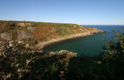 Lamorna Cove Stock Image