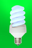Lamp. Energy saving electric lamp on green background Stock Images