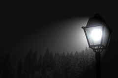 Lamp. Bright lamp shinning in wintery conditions royalty free stock photo
