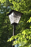 Lamp in a beer garden. A lamp in a beer garden with green leaves Stock Image