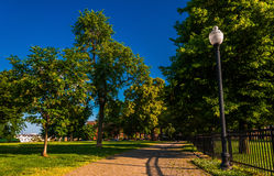 Lamp and brick path through trees on Federal Hill, Baltimore, Ma Royalty Free Stock Photos