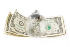 Lamp bulb on american dollar Stock Images