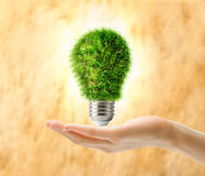 Lamp bulb made of grass in female hand Royalty Free Stock Photo