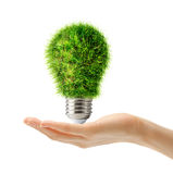 Lamp bulb made of green grass in hand Royalty Free Stock Images