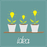 Lamp bulb plants in the pots. Wooden shelf. Growing idea concept. Vector illustration Stock Image