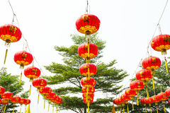 Lamp of Chinese. Red lamp of Chinese for festival Royalty Free Stock Photography