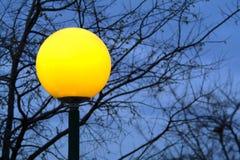 Lamp en boom Royalty-vrije Stock Foto's