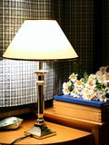 Lamp en madeliefjes 2 Stock Foto's
