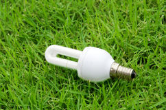Lamp. Energy-saving light bulb with grass in the background Stock Photos