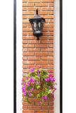 Lamp and flower pot aligned on a wall. Stock Images