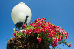 Lamp and Flowers. Summer flowers atop a lamp post stock photography