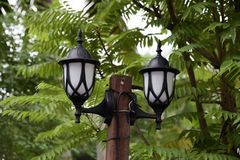 The lamp in the forest stock photos
