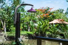 Lamp in the garden. Antique lantern in the garden royalty free stock images