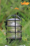 Lamp in garden with leaves covered Stock Images
