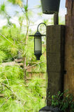 Lamp in garden Stock Photography