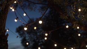 Lamp garlands on a trees. At night stock footage