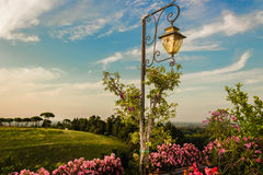 Lamp on green view Royalty Free Stock Images