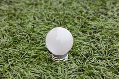 Lamp in groen gras Royalty-vrije Stock Fotografie
