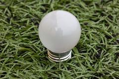 Lamp in groen gras Stock Fotografie