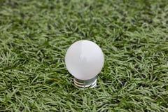 Lamp in groen gras Stock Foto's