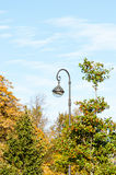 Lamp. Lantern and trees in autumn Royalty Free Stock Images