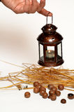 Lamp, macadamia nuts and wheat Stock Photo