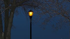 Lamp in the Night Royalty Free Stock Images