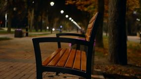 Lamp park trees night. Lamp in the park trees at night stock video footage