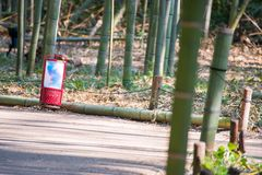 Lamp placed along the pathway in bamboo forest at Arashiyama, Ky. Oto, Japan Stock Image