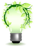 Lamp with plant  Royalty Free Stock Photos