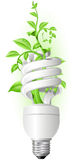 Lamp with plant stock illustration