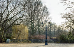 Lamp post alone in park Royalty Free Stock Image