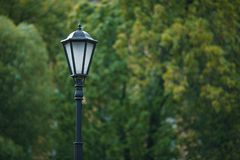 Lamp post in the background of the tree royalty free stock image