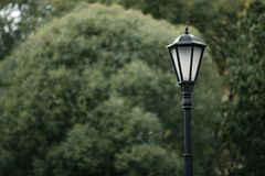 Lamp post in the background of the tree stock image