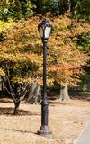 A Lamp Post in Central Park, New York. Is pictured against autumn foliage Stock Photography