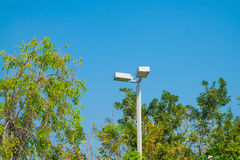 Lamp post electricity industry with blue sky background and tree Stock Images