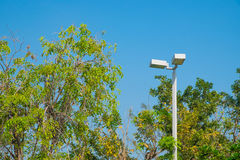 Lamp post electricity industry with blue sky background and tree Stock Photo