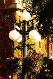 Lamp Post in Evening Light Royalty Free Stock Photo