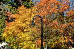 Lamp post in Fall colors Royalty Free Stock Photos