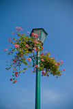 Lamp post with flower basket Stock Image