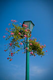 Lamp post with flower basket Royalty Free Stock Photos