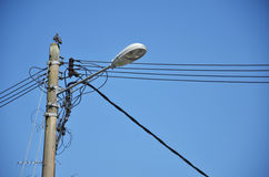 Lamp post with many cables Stock Images