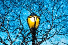 Lamp post and tree branches on snowy night stock photos