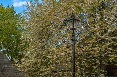 Lamp post between the trees in autumn at England UK stock photos