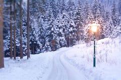 Lamp Post in Winter. Like in Narnia stock image