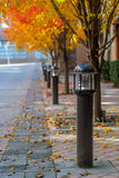 Lamp Posts Line a Sidewalk with Fall Foliage. Lamp posts lining a suburban walkway parallel yellow and orange leaved trees royalty free stock photography