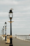 Lamp posts at Whitby North Yorkshire. A row of lamp posts at Whitby royalty free stock images