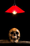 Lamp and skull on wood Royalty Free Stock Photography